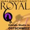 Royal 6, Club, Bordell, Bar..., St. Gallen