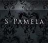 S-PAMELA Solothurn Logo