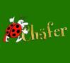 Chäfer Kontakt Bar, Club, Bordell, Bar..., Aargau