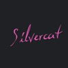 Club Silvercats, Club, Bordell, Bar..., Bern